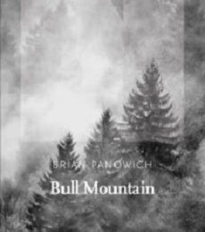 Bull Mountain, Brian Panowich, NNeditore,